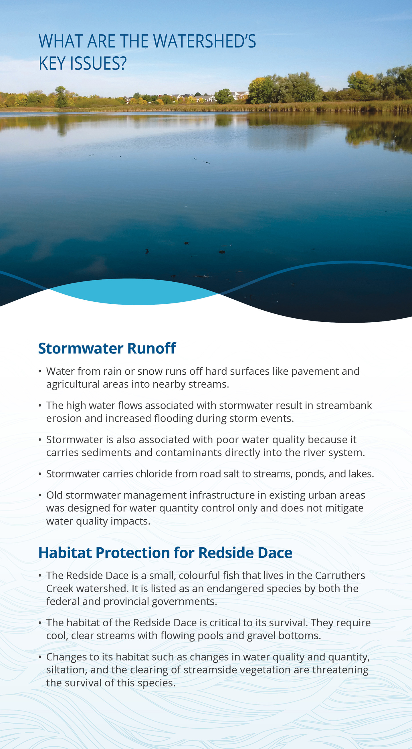 key issues panel of Carruthers Creek watershed report card