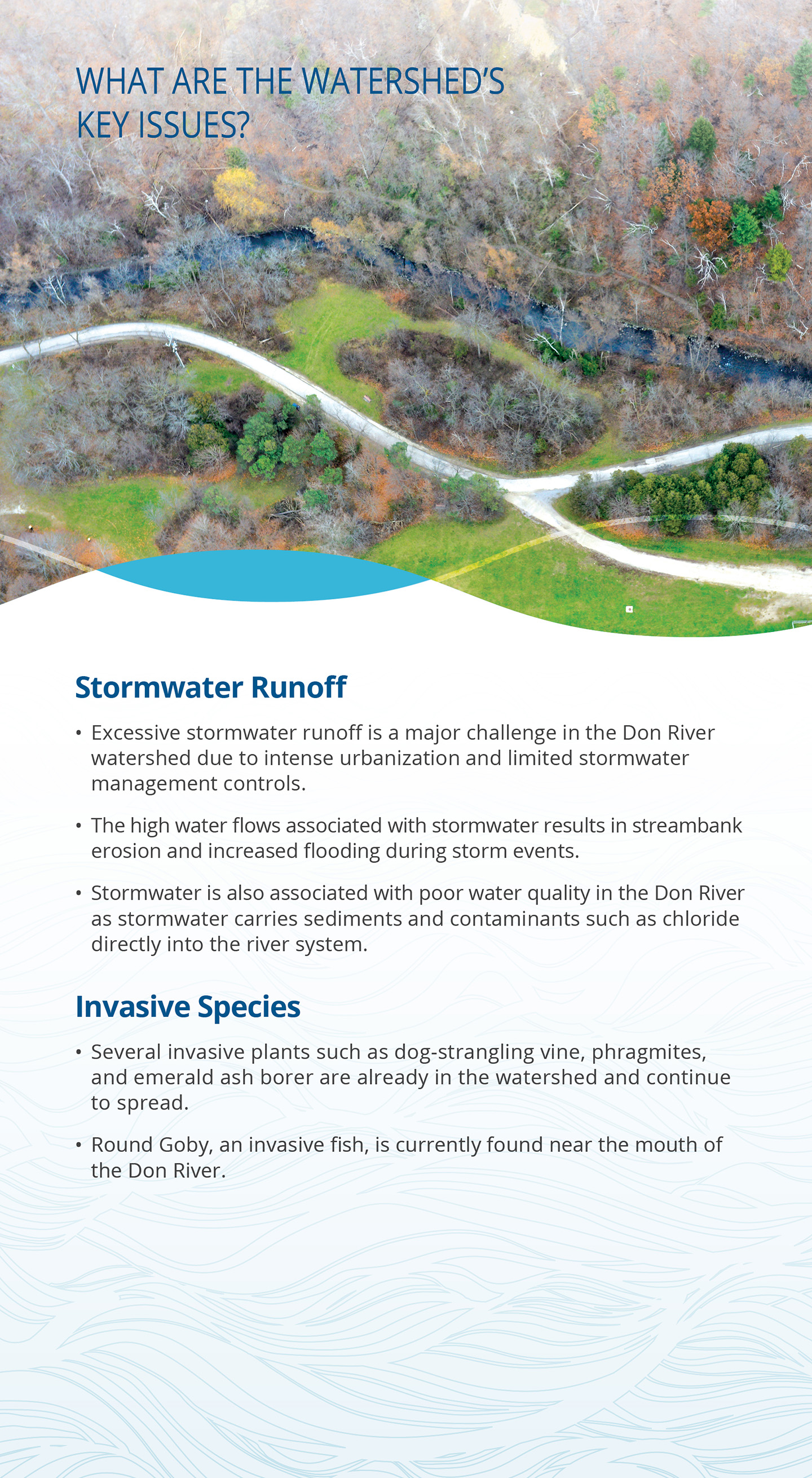 key issues panel of Don River watershed report card