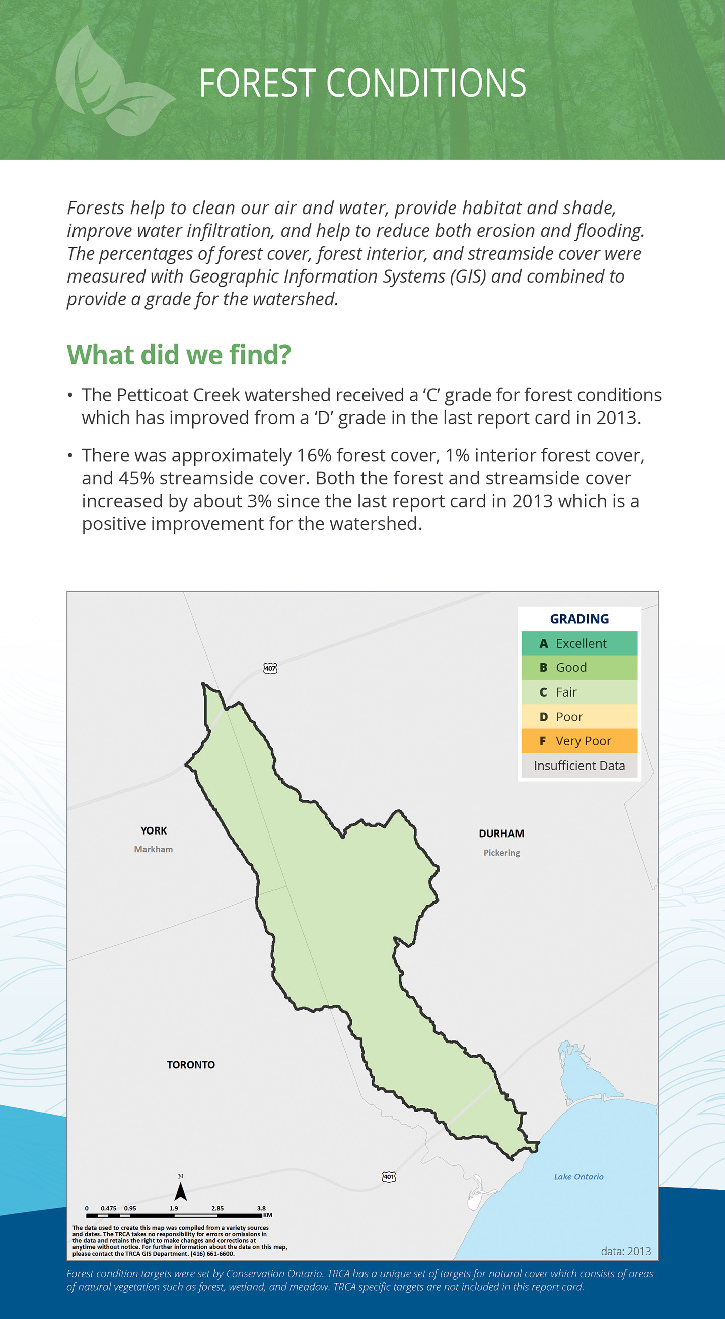forest conditions panel of Petticoat Creek watershed report card