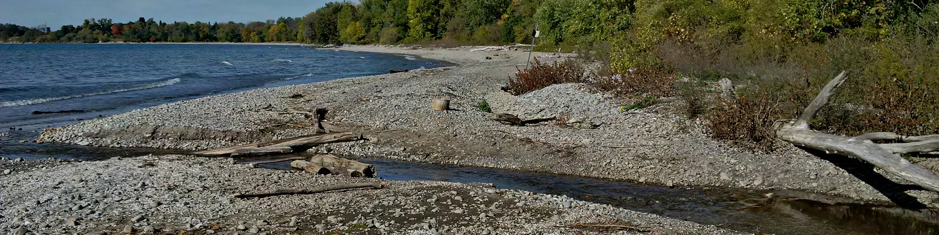 mouth of Carruthers Creek