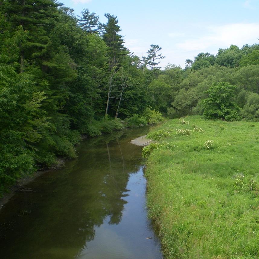Petticoat Creek