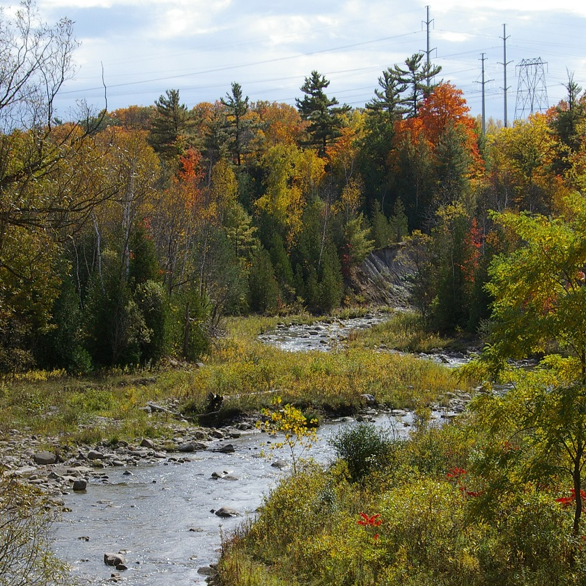 Rouge River in autumn
