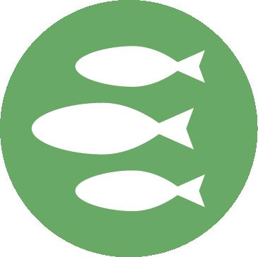 biodiversity icon